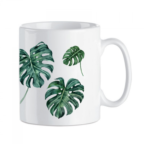 KB.MONSTERA1.png